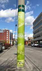 Oshawa Wood Pole Green Wrap After Small